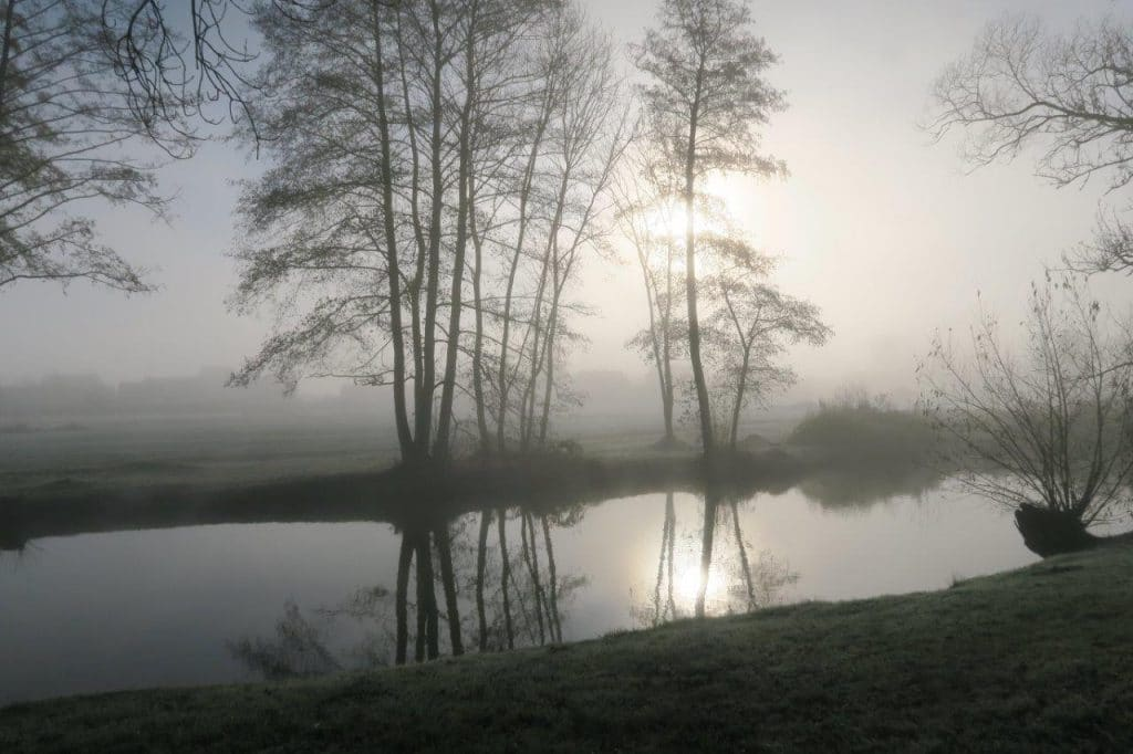 Photo en contre-jour de brumes sur les bords de la Meurthe à Sainte-Marguerite