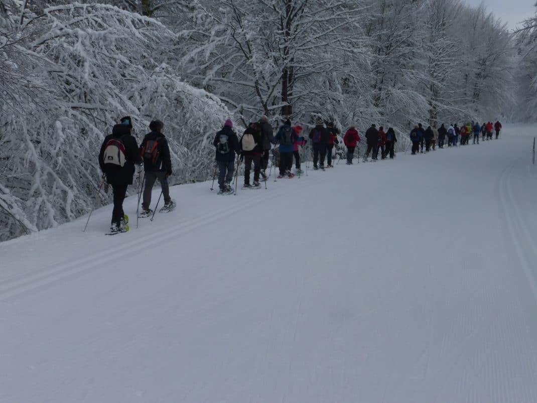 Le groupe longe la piste de ski de fond