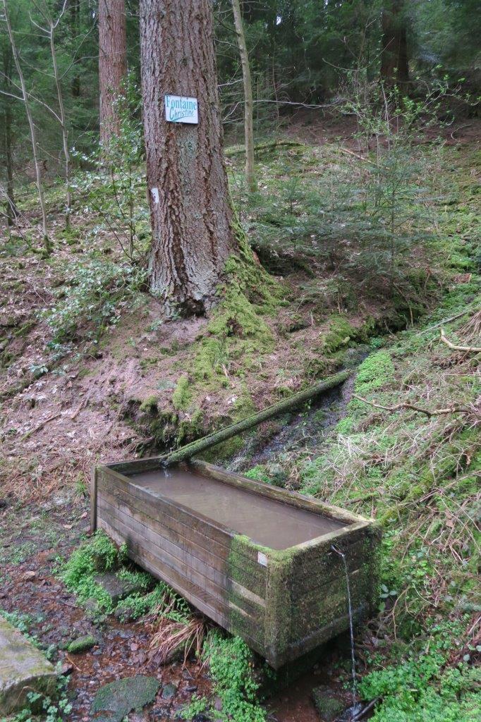 La Fontaine Christine au milieu de la forêt