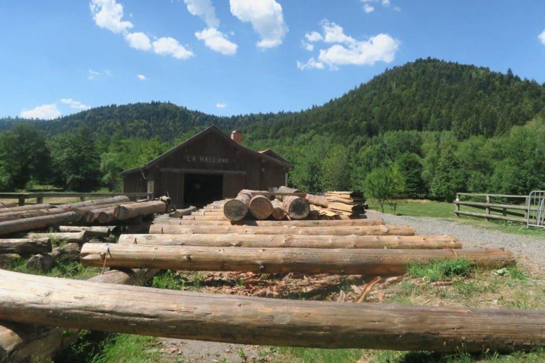 """Lae bâtiment et son stock de """"tronces"""", prêtes à être débitées en planches ou en poutres."""