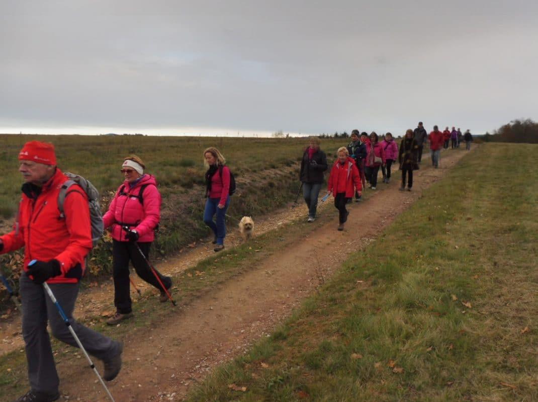 Les marcheurs sur le sentier de prairie