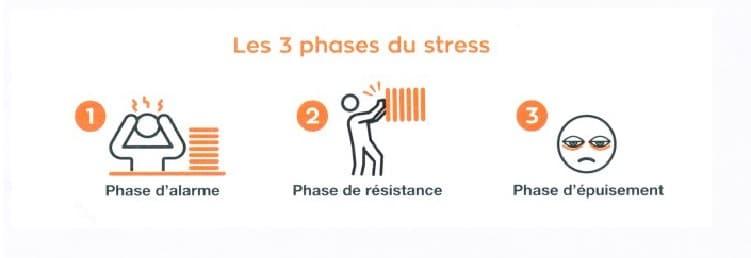 Les trois phases du stress : alarme, résistance et épuisement