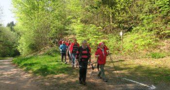 Photo de marcheurs au sortir d'un sentier forestier