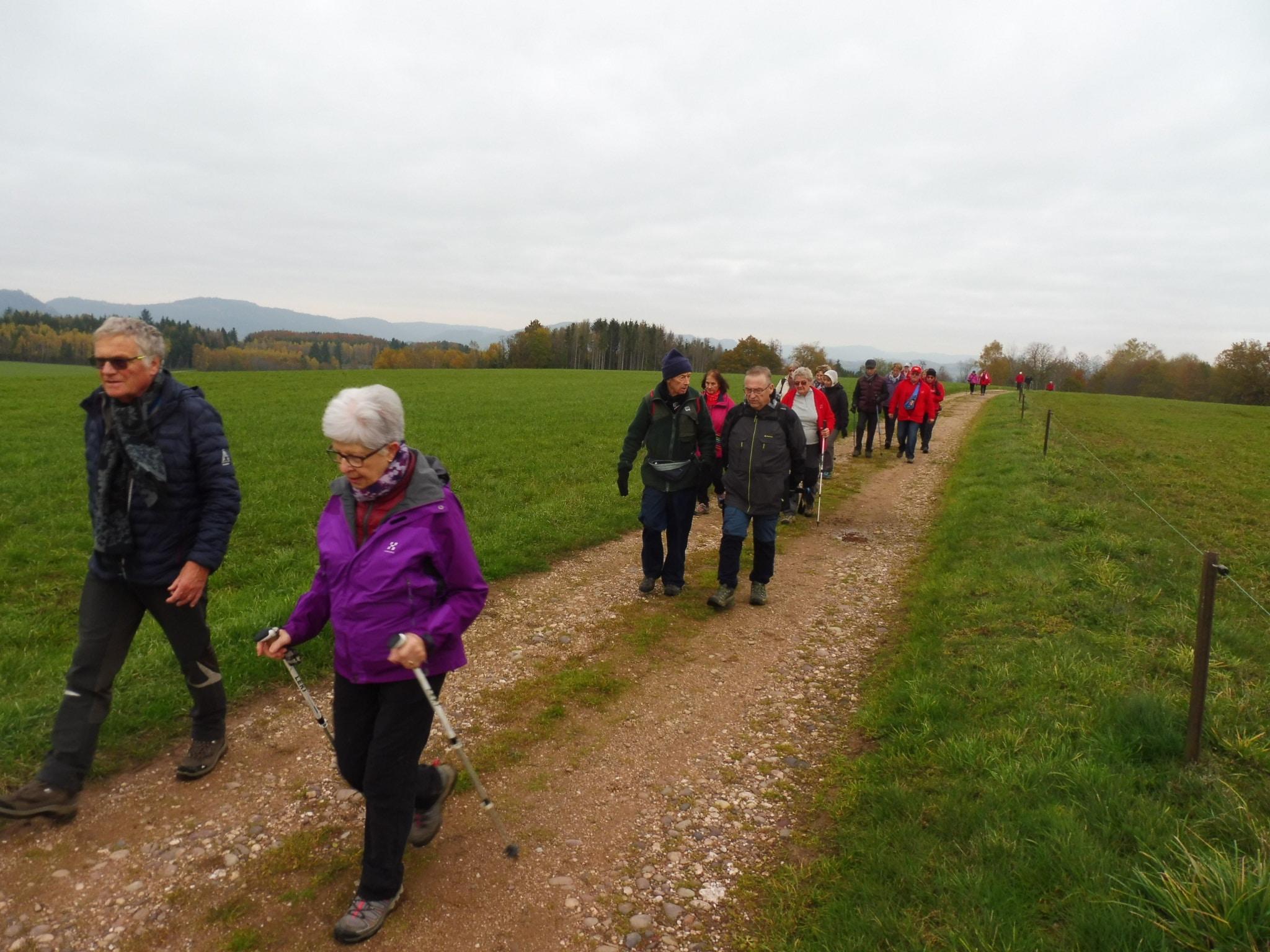 Les marcheurs sur la plateau de Nompatelise