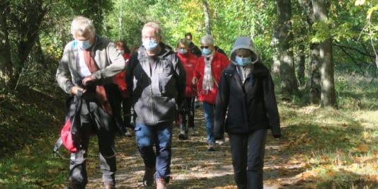 Photo d'une partie des marcheurs en sous-bois